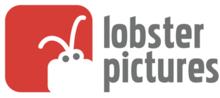 Lobster Vision